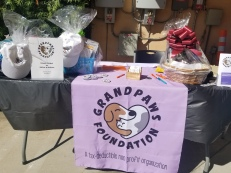 Our table at Bloomfield Animal Hospital Pet disaster event
